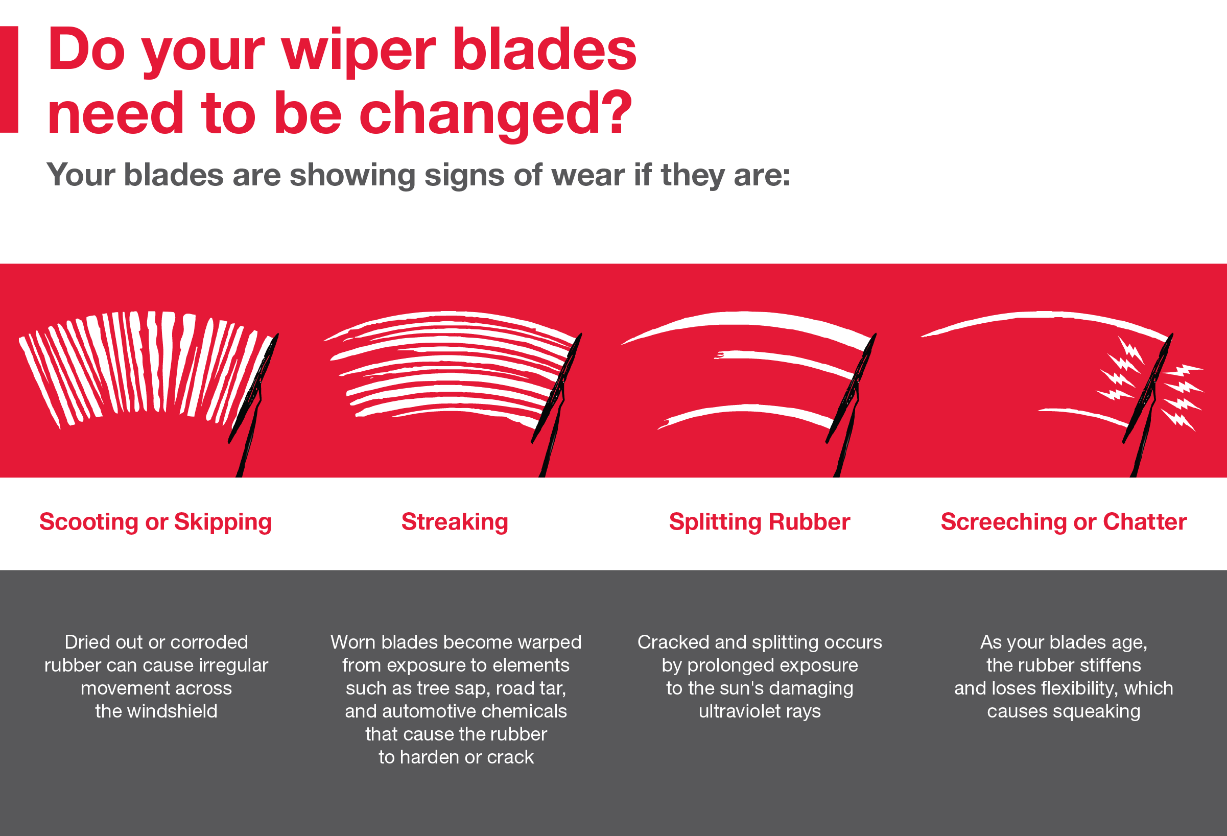 Do your wiper blades need to be changed? Call your local dealer for more info: 731.668.1234