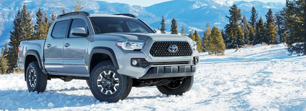 tacoma in snowy ground